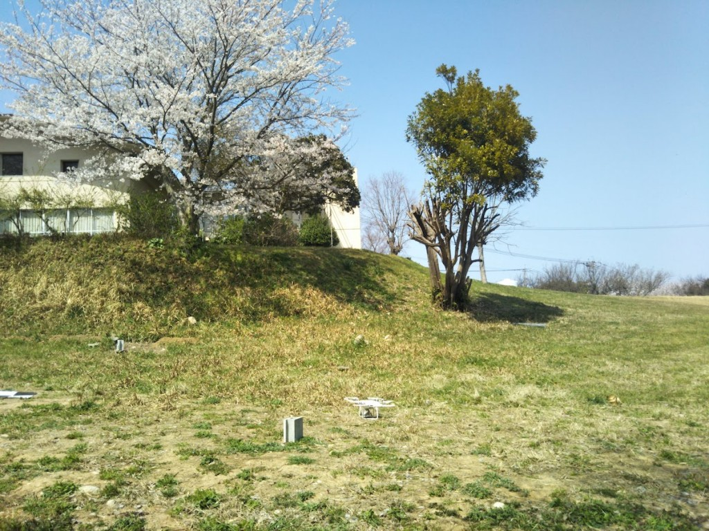 桜ドローン